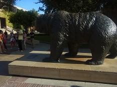 UCLA熊の像