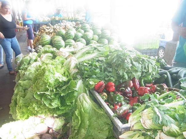 コスタリカ Ciudad Colon 市場