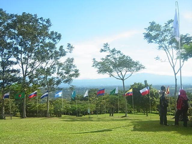UPEACE APS 平和大 旗